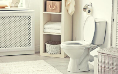 All You Need to Know About Kohler Santa Rosa Toilet Review & Definitive Guide