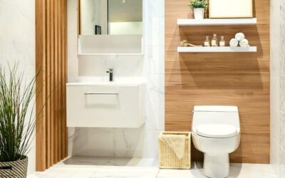 Advantages Of Icera Toilet Reviews And How You Can Make Full Use Of It.