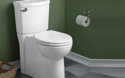 American Standard Cadet 3 Toilet Review & Buying Guide in 2020