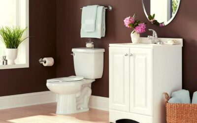 Proflo Toilet Reviews & Buying Guide in 2020