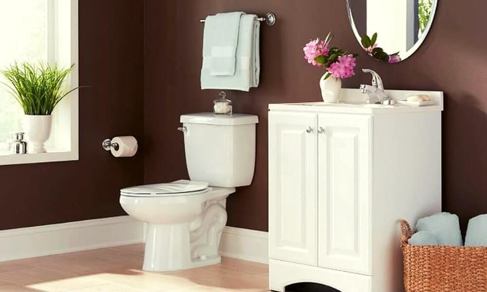 Proflo Toilet