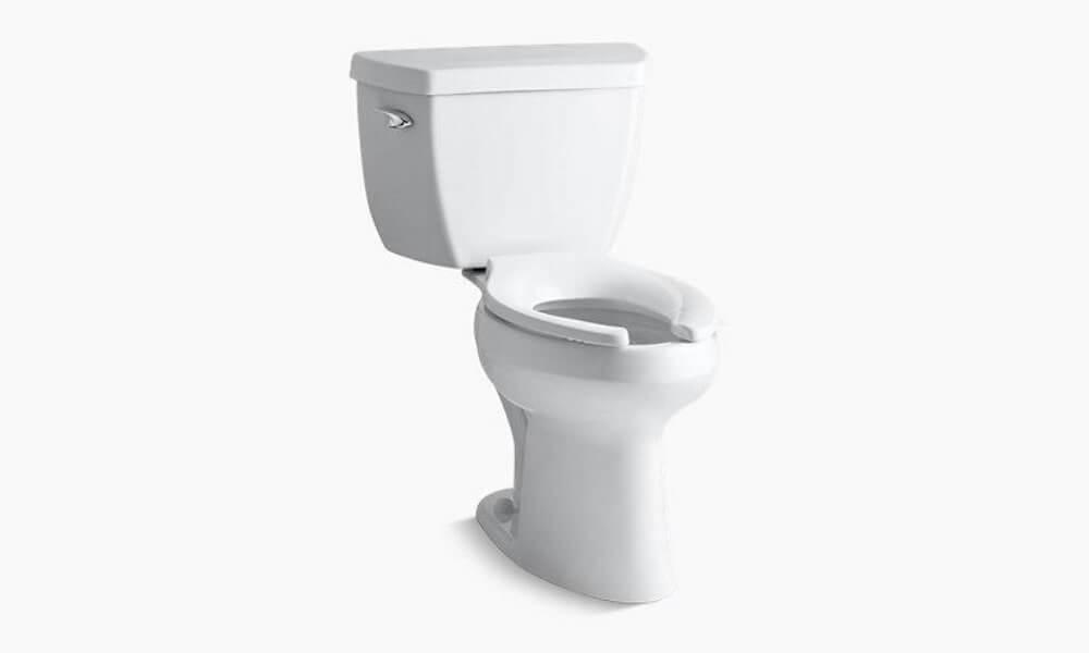 Zurn Z5572 Dual Flush
