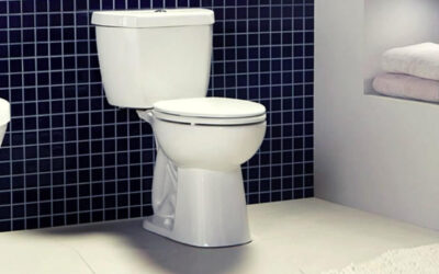 Niagara Stealth Toilet Review: To Buy or Not to Buy?