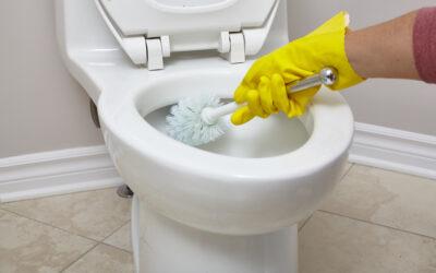 Best Toilet Brush Reviews 2021