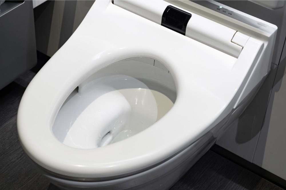 slow close toilet seat
