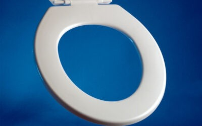 What Are Toilet Seats Made Of?